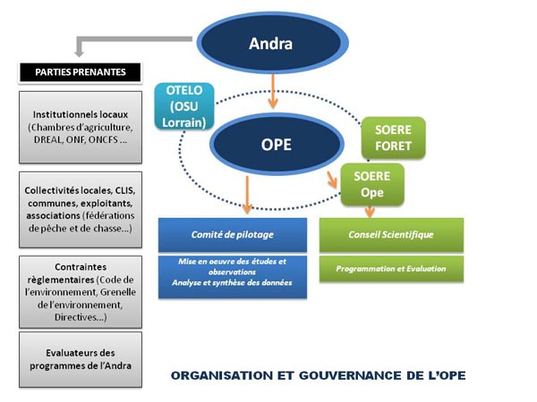 Schema of the organisation and management of the OPE